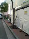 Shibuya_spain_1